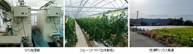 s-tokutani21.jpg