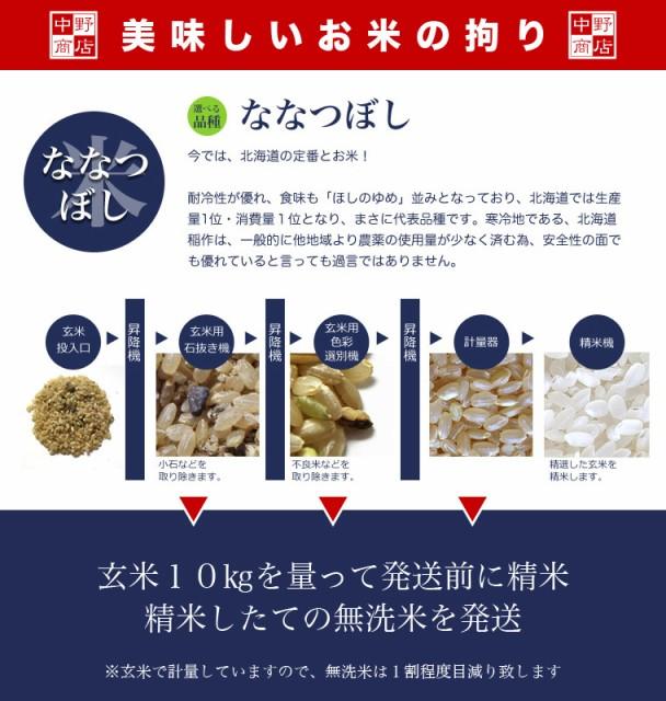 無洗米 北海道から直送!【送料無料】北海道米 ななつぼし 無洗米 10kg ( 米 10kg /米/コメ)