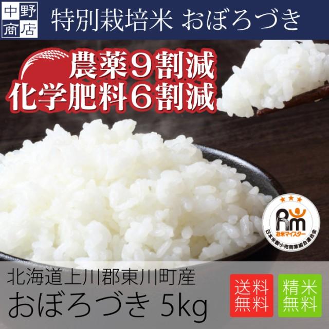 特別栽培米 減農薬栽培米 玄米 米 特別栽培米/北海道産 おぼろづき 5kg 特別栽培米(節減対象農薬9割減・化学肥料6割減)