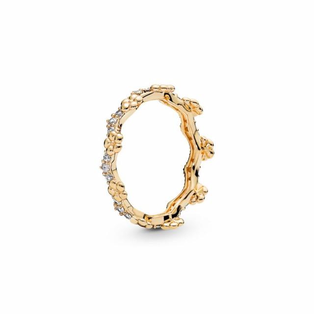 最前線の パンドラ PANDORA レディース 指輪・リング ジュエリー・アクセサリー Shine Flower Crown Ring Gold, 月ヶ瀬村 f54d32a4