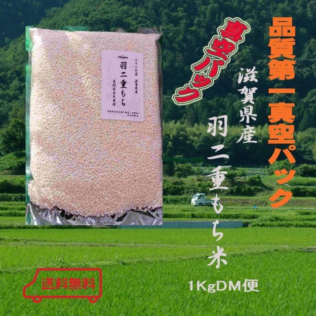 29年産 DM便 もち米1Kg 滋賀県産  羽二重餅1Kg 真空パック モチゴメ絹織物のような柔らかさと光沢があります