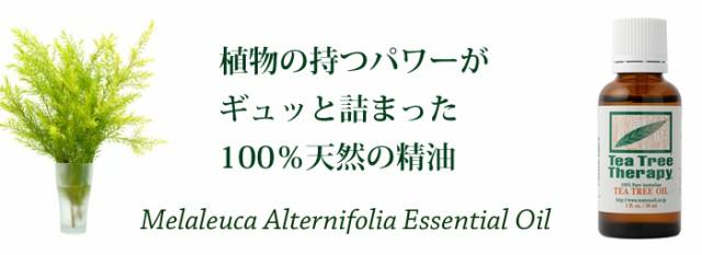 100%天然 ティーツリーオイル