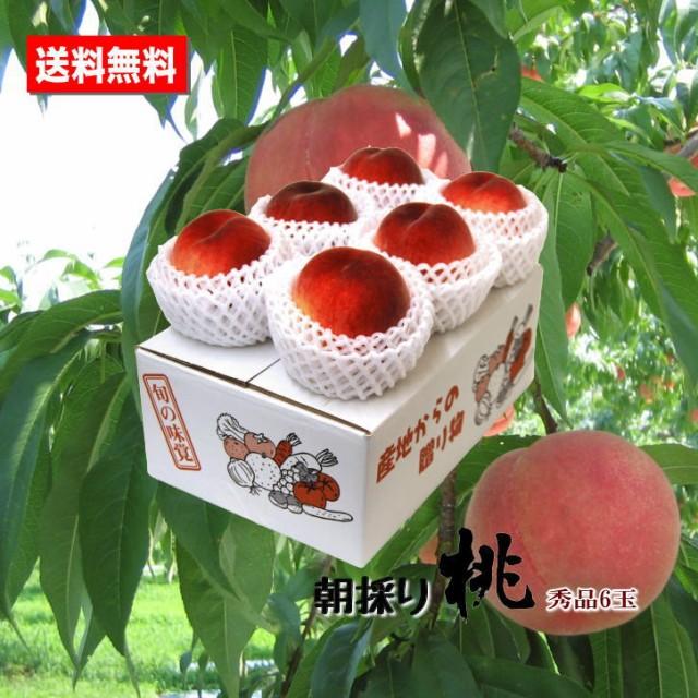 送料無料 完熟桃 和歌山県産 秀品 6玉 もも 高糖度 朝採り お中元ギフト 贈答用 家庭用 おためし