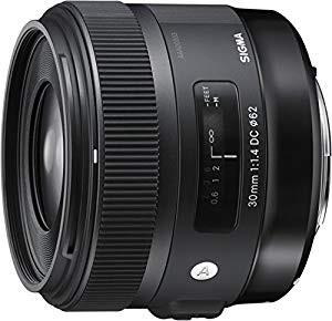 【人気No.1】 SIGMA SIGMA 単焦点レンズ F1.4 Art 30mm F1.4 DC HSM ソニー用 DC APS-Cサイズ 301620(品), 行橋市:ef5335db --- chevron9.de