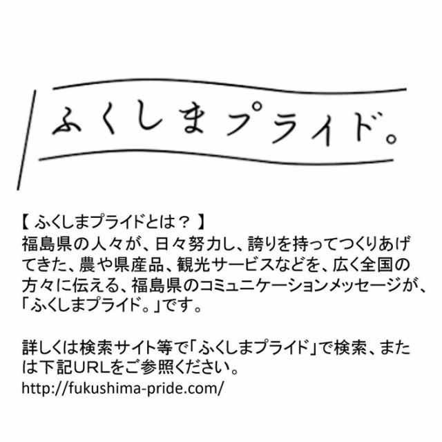 ブランド 豚 麓山高原豚 使用 ご当地 ホルモン 福島ホルモン 三種 セット (計9パック) 送料無料 福島 ふくしま ギフト プチギフト
