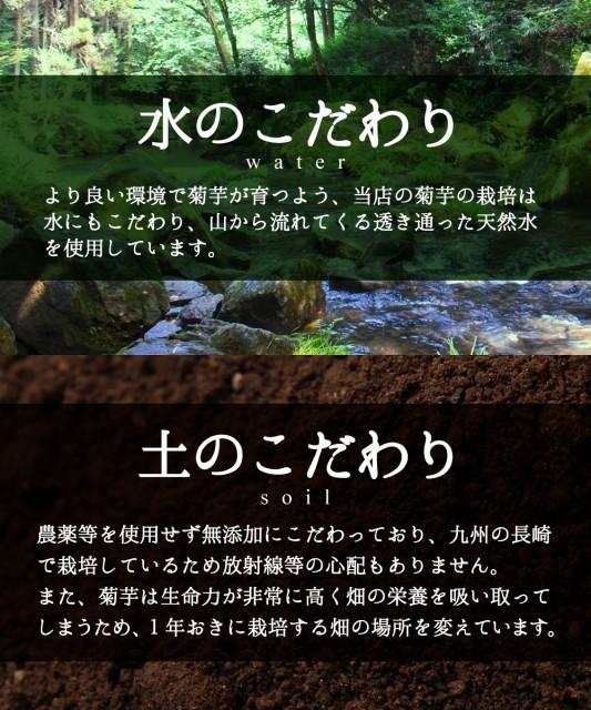 【送料無料】長崎県産の無農薬で育てた菊芋をそのままチップス/乾燥菊芋/菊芋チップス/キクイモチップス/キクイモのちから!