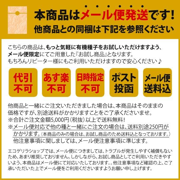 【1000円ポッキリ】 種 有機種子 育てやすい種 お試し 3袋セット(リーフレタス・水菜・バジル