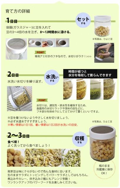 プチ栽培 セット オーガニック の種から育てる 発芽豆 栽培キット <マングビーン> おかわり
