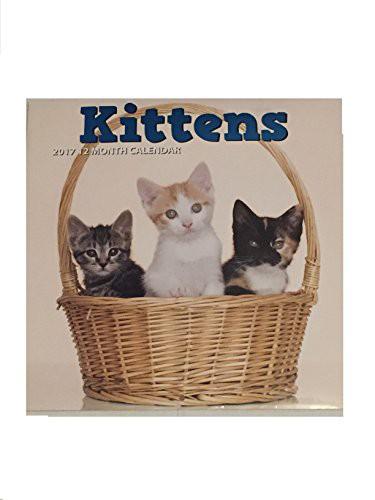 【Kittens 2017 12か月】 b01j8zkpiy