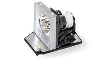人気の春夏 【Acer f Replacement Replacement lamp/260W f P5280 lamp/260W】 b0047n8cce, ZealZip-Cashmere:0ba73018 --- chevron9.de