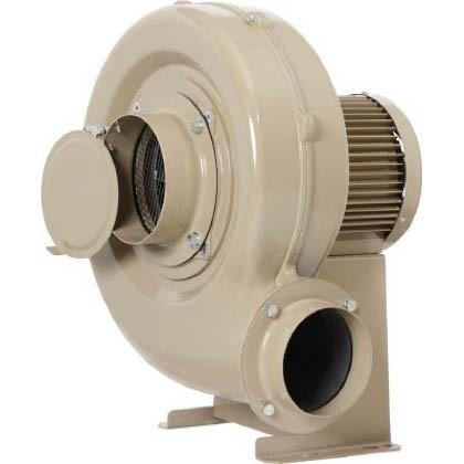 最低価格の 昭和 高効率電動送風機コンパクトシリーズ(1.0kW) 500 x 483 x 580 mm ECH10, イーストビューティ 1c054442
