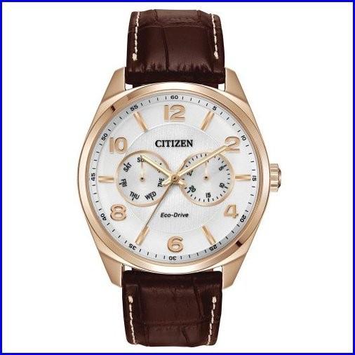 超可爱の Men Citizen s Citizen s eco-driveレザーストラップドレス腕時計, TROPHY(トロフィー):9635c518 --- 1gc.de