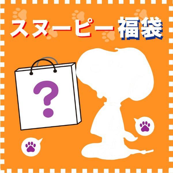 限定価格セール! 福袋 スヌーピー ブラインドはてなボックス50000 先行予約 2020年3月下旬発送 福袋 予約品, 京都市:10c6069e --- oeko-landbau-beratung.de