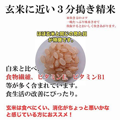 (精米)岩手県矢巾町産 川村巧さんのお米 特別栽培米 三分搗き 銀河のしずく 平成28年度産×5kg