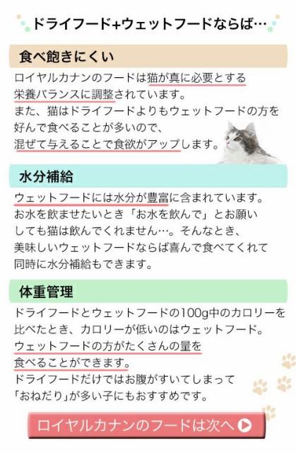 ロイヤルカナン 猫用 キャットフード 健康な尿の維持ドライウェットセット ドライ2kg×1袋 + パウチ85g×4袋