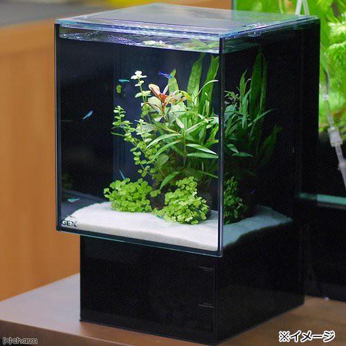 (水草)GEX グラステリア AGS OF230 水草付 フルセット 本州・四国限定