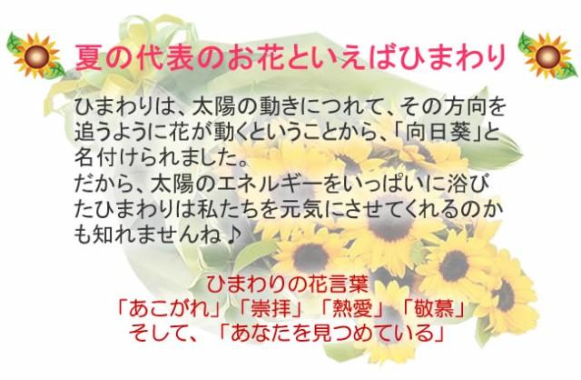 まだ間に合う!父の日【誕生日】 【花】 【送料無料】大輪ひまわり20本の花束【女性】