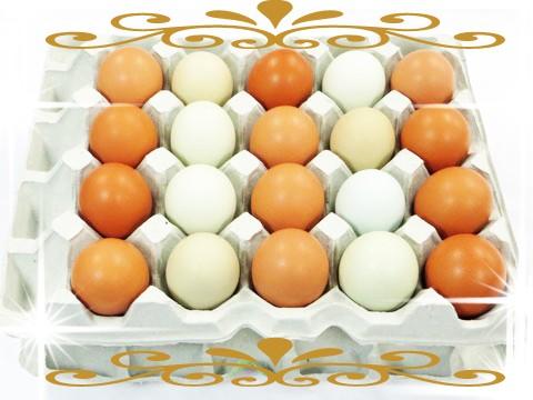 こだわり卵 通販