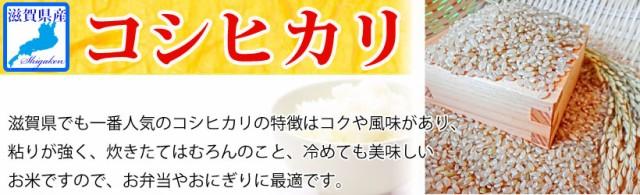 【送料無料※北海道・沖縄・離島を除く】新米 29年産 滋賀県産コシヒカリ10kg玄米S【精米方法が選べます】
