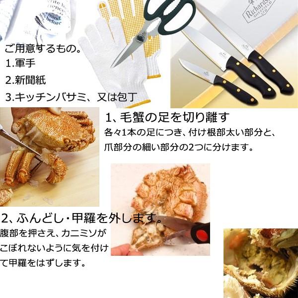毛ガニ 毛蟹 カニ 蟹 姿  特大 北海道産 ボイル 毛がに 毛蟹 480g×1尾 かに けがに ギフト プレゼント 送料無料 お買い得 かにみそ
