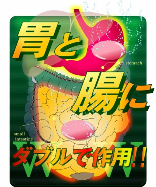 BO ZERO(ビーオーゼロ)胃と腸にダブルで作用