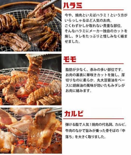 亀山社中 焼肉 バーベキューセット 10 はさみ・説明書付きバーベキュー等に最適なセット
