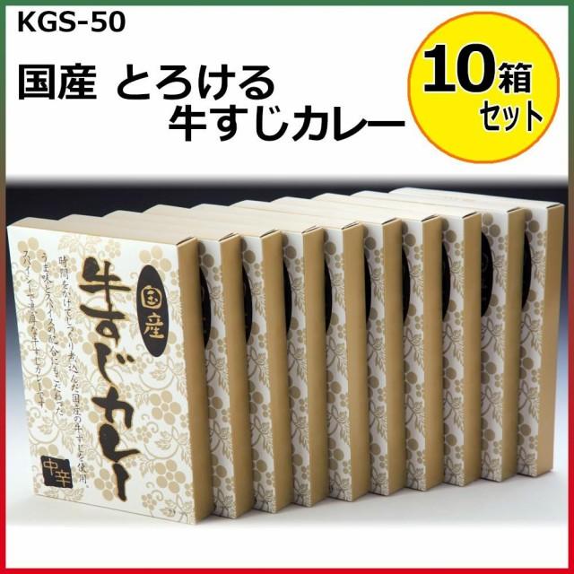 国産 とろける牛すじカレー 180g×10箱セット KGS-50