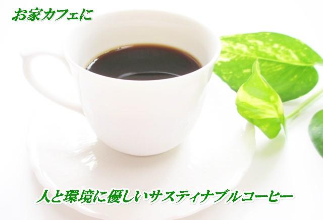 無農薬・有機栽培農園コーヒー コーヒーカップ