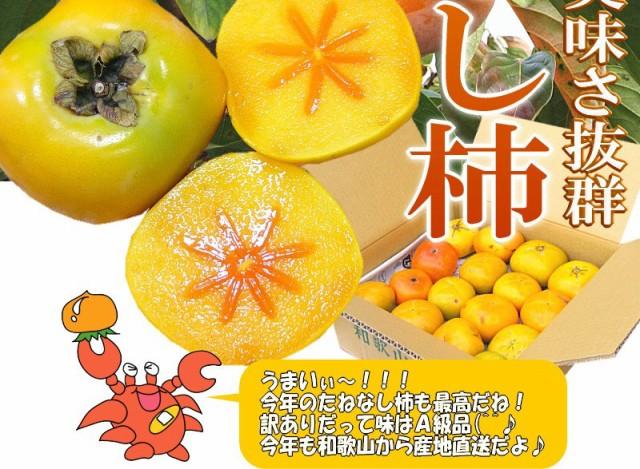 紀州 和歌山 たねなし柿 送料無料 送料込