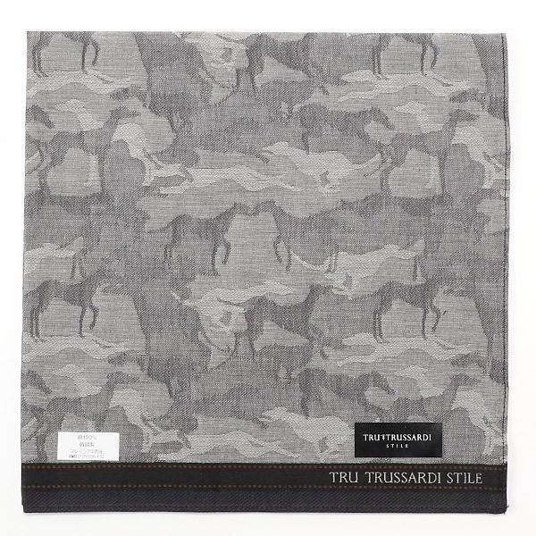 トゥルー トラサルディ スティーレ(TRU TRUSSARDI STILE)/【48×48cm】先染めハンカチ(メンズ)