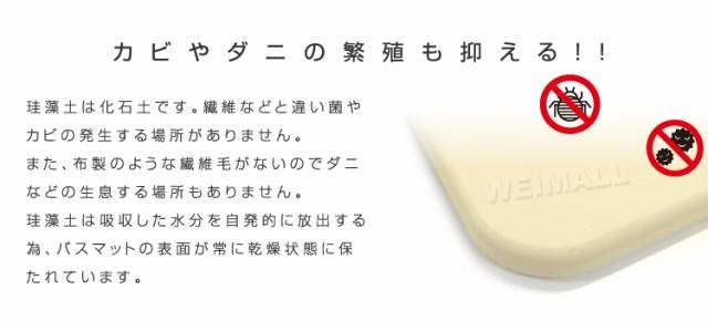 珪藻土バスマット [2枚set] バスマット 珪藻土 マット 珪藻土マット Mサイズ 40cm 珪藻土 バスマット 足拭きマット 足ふきマット