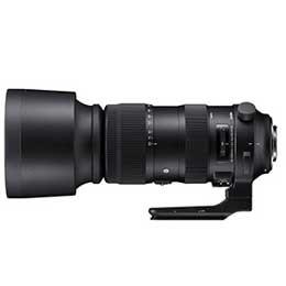 日本最級 【送料無料】【即納】シグマ HSM DG F4.5-6.3 AF [ニコン用] 60-600mm OS-カメラ