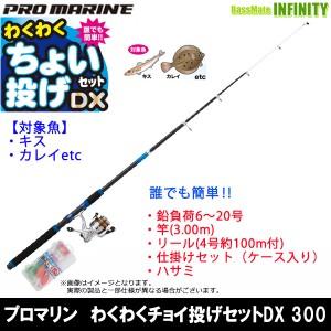 【在庫限定54%OFF】プロマリン わくわくチョイ投げセットDX 300 海釣り入門セット