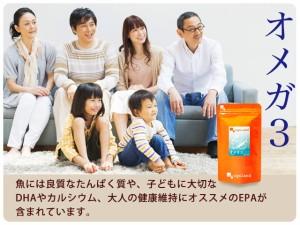 お徳用オメガ3-DHA&EPA&α-リノレン酸サプリ(約3ヶ月分)+(約1ヶ月分)送料無料 サプリメント 健康食品 エゴマ油 えごま油