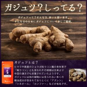 ガジュツ紫ウコン(うこん)粒(約1ヶ月分)3150円以上送料無料 ウコン ダイエット 激安 サプリメント トイレ習慣 飲み会
