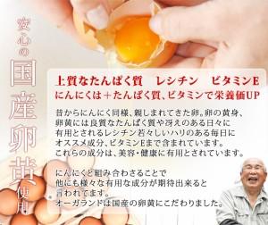 ■即納■お徳用黒にんにく卵黄(約3ヶ月分)3150円以上送料無料 サプリ サプリメント 健康食品 ニンニク卵黄