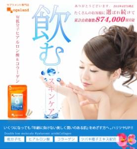 ■即納■お徳用W低分子ヒアルロン酸&コラーゲン(約3ヶ月分)3150円以上送料無料 サプリ サプリメント 健康食品
