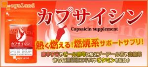 お徳用カプサイシン(約3ヶ月分)3150円以上送料無料 サプリ サプリメント 健康食品 唐辛子 ダイエット
