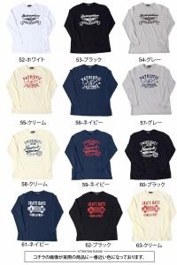 メール便送料無料 Tシャツ メンズ 長袖 ロンT 2018年バージョン アメカジ プリントTシャツ カットソー カレッジ ロゴ ネコポス