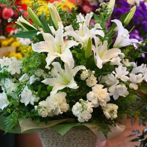 【結婚祝いの花 父の日 68】 おまかせ!ホワイトのフラワーアレンジメント 花ギフト結婚祝いの