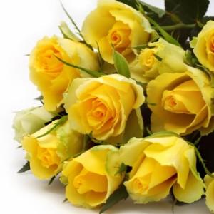 【結婚祝いの花 父の日 81】 おまかせ! 黄色オレンジ系バラの花束  花ギフト結婚祝いの花祝