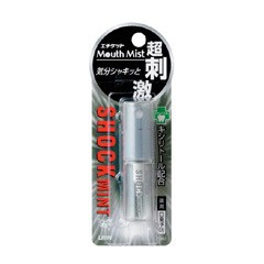 エチケットマウスミスト ショックミント(5mL) ライオン マウススプレー 口臭予防 オーラルケア 口臭ケア デオドラント