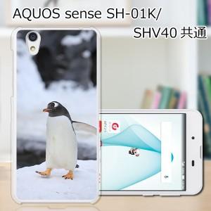 AQUOS sense SHV40ハードケース/カバー 【ペンギン PCクリアハードカバー】 スマートフォンカバー・ジャケット
