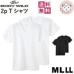 【送料無料】グンゼ ボディワイルド VネックTシャツ 2枚組×5セット BW51152 M L LL