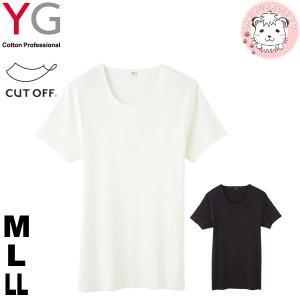 グンゼ YG ワイジー カットオフ 完全無縫製 クルーネックTシャツ YV1313 M L LL