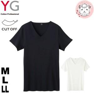 グンゼ YG ワイジー カットオフ 完全無縫製 VネックTシャツ YV1315 M L LL