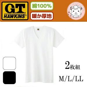 グンゼ ホーキンス VネックTシャツ 2枚組 HK55152 M L LL
