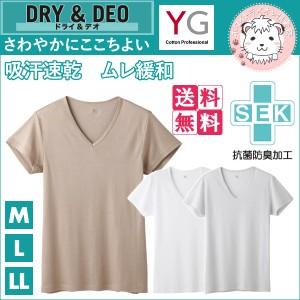 【送料無料】VネックTシャツ 10枚セット グンゼ GUNZE YG ワイジー DRY&DEOシリーズ 半袖 V首Tシャツ M L LL