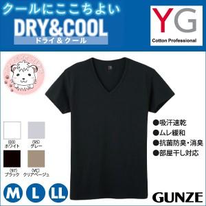 グンゼ YG ワイジー ドライ&クール  VネックTシャツ M L LL
