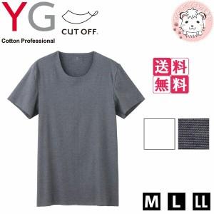 【送料無料】グンゼ YG ワイジー カットオフ クルーネックTシャツ 6枚セット M L LL